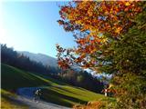 Loška planinska pot prostora je dovolj tudi za kolesarje