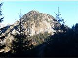 Stegovnikčez gozd prvič zagledamo Štegovnik