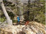 Stegovnikmestoma strmo navzdol po vzhodnem grebenu