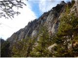 Stegovnikpot poteka čez gozd in pod skalno stopnjo južno od grebena Štegovnika