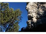 Monte PisimoniKo zapustimo gozd se spremeni okolje in značaj poti