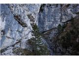 Monte PisimoniTudi po tej vpadnici poteka pot :)