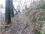 celje - Miklavžev hrib (Razgledni stolp)