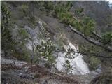 Polhograjska Gora (Sveti Lovrenc)na grebenski poti