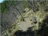 Bočpo lepi poti čez Galke