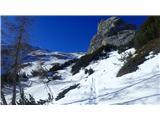 Marmolada pozimiPomrznjena sled med ruševjem in premalo snega.