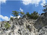 Polhograjska Grmadapreko skal