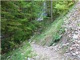Slovenski slapovi vodotokov Z gozdne ceste se spustimo pod slap.