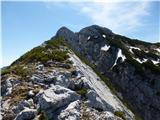 Krnička gora iz Matkove KrnicePo grebenu proti sedlu nad Matkovo krnico.