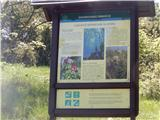 Slavnik - 1028 mSlavnik  - kot naravni spomenik, ... zanimivo, da v tem času tudi tukaj najdemo narcise