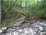 Storžič pot preko potoka