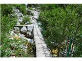 Slovenski slapovi vodotokov Po lepo urejeni potki do njega.