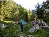 Grintovec in Kočnatule se zavije Levo za Grdi graben in Dolce, Naravnost vodi pot na Kokrsko sedlo