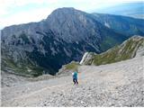 Grintovec in Kočnadolgo in sitno melišče nad bivakom