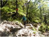 Grintovec in Kočnapovratek po lažji stari poti pod Kokrskim sedlom na Suhadolnik