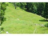 Slovenske planine v vseh letnih časihTo je Stara planina.