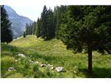 Slovenske planine v vseh letnih časihTo naj bi bil zgornji pašnik.