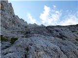 Viš - SZ deberStolpi v grebenu so že vidni.