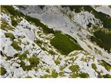 Kalška goraKar vleče se ta pot prek Kalcev.