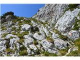 Kalška goraPred manjšim sedlom, ki deli Kalški greben in Kalško goro.