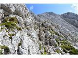 Bovški GamsovecBrez prostega plezanja po skalovju nikjer ne gre.