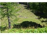 Slovenske planine v vseh letnih časihIzvir na planini.