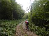 Breginjski kot & Nadižanadaljevanje po bolj prijazni gozdni cesti, ki pa se prične vzpenjati v dolgih okljukih čez gozd