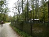 Breginjski kot & Nadižamimo campa vodi kolesarska in peš pot ob Nadiži vse do Robiča