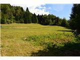 Slovenske planine v vseh letnih časihCelo njivo krompirja imajo.