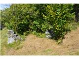 Slovenske planine v vseh letnih časihOd nekdaj mogočnih stanov so ostale le ruševine.