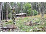 Slovenske planine v vseh letnih časihNato sem se zapeljal na Zg. Jezersko in v Makekovo Kočno.To pa je že posnetek koče v gozdu tam okrog Kopišč.