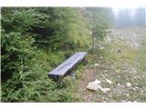 Slovenske planine v vseh letnih časihNa koncu gozdne ceste  je celo klopca -prave poti za naprej pa nikjer.