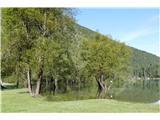 Belopeška jezera - Rifugio Zacchi Zgornje Mangrtsko jezero je zaradi obililce dežja razširilo svoje bregove
