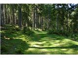 Belopeška jezera - Rifugio Zacchi nagrada - žametna pot