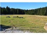Slovenske planine v vseh letnih časihNa robu tega travnićka ob cesti je spomladi polno spomladanskega jegliča .