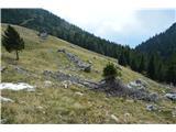 Slovenske planine v vseh letnih časihPrvič sem opazil te ruševine bivše že kdavnaj propadle planšarije.