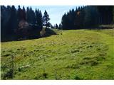 Slovenske planine v vseh letnih časihNa poti na Galetovec.