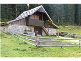 Slovenske planine v vseh letnih časihJe kar prek deset teh brunaric.