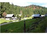 Slovenske planine v vseh letnih časihVračam se po poti nad planino.