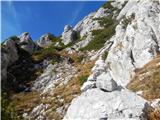 Mrzla goramožiclji so redki, od tu v desno in navzgor - prvič na vršnji greben
