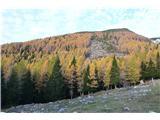 Slovenske planine v vseh letnih časihTu je bil plaz.