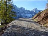 Goli vrh  1787 mnmAvstijska gozdna magistralka