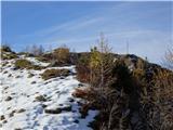 Goli vrh  1787 mnmpod vrhom