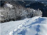 Veliki RogatecZaradi sipkega nesprijetega snega zelo zahteven sestop.