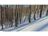 Mali in Veliki SnežnikPozno popoldne
