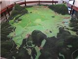 Slivnica - 1114 mživa maketa Cerkniškega jezera