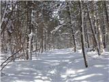 Vremščicatudi pod Vremščico je nekaj snega