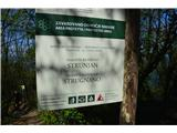 Slovenska obalaNahajali smo se v naravnem rezervatu Strunjan.