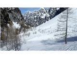 KredaricaSmučati se da udobno po dnu doline, prečenja pod Draškimi vrhovi niso potrebna. Ruševje je v celoti prekrito s snegom.