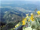 Tirske pečipogled na dolino
